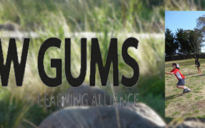 In the Spotlight: NSW Snow Gums Learning Alliance