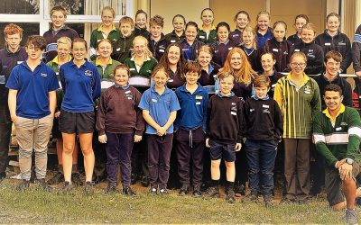 School Clustering: Happy Days in the Western Districts
