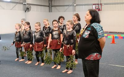Embedding Indigenous Cultural Language in Curriculum